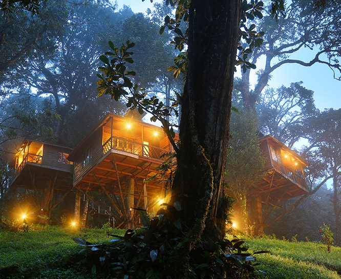 accommodation in munnar
