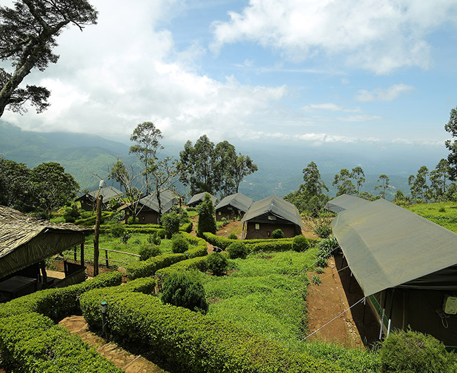 Mountain View in munnar