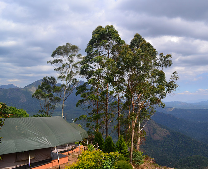 nature resorts in munnar