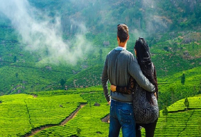 honeymoon packages in munnar