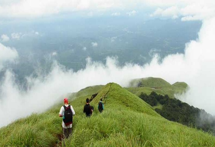 trekking packages in munnar