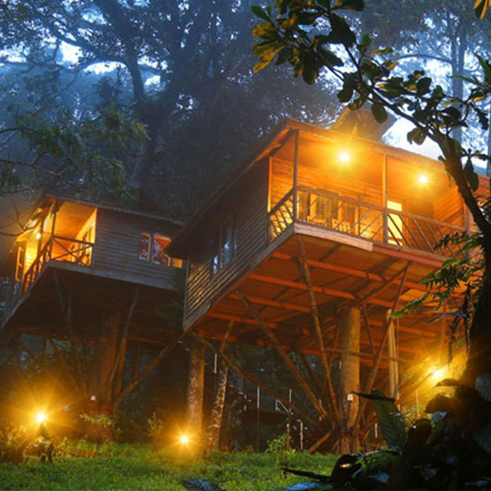 Best Resort To Stay In Munnar Couple Friendly Resort In Munnar